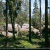 Błędne skały - fragment